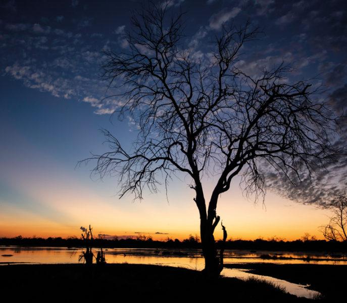 Belmond Eagle Island Botswana