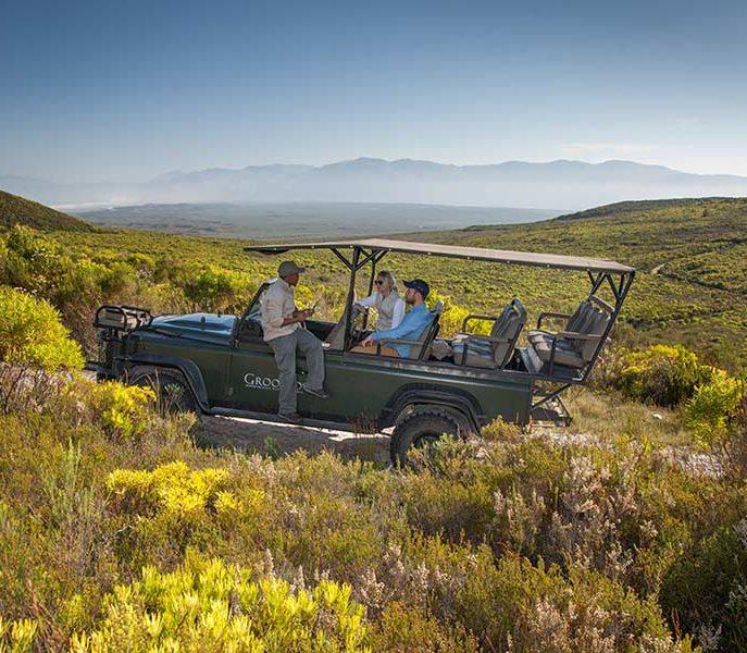 Sunset Safari Grootbos Private Nature Reserve